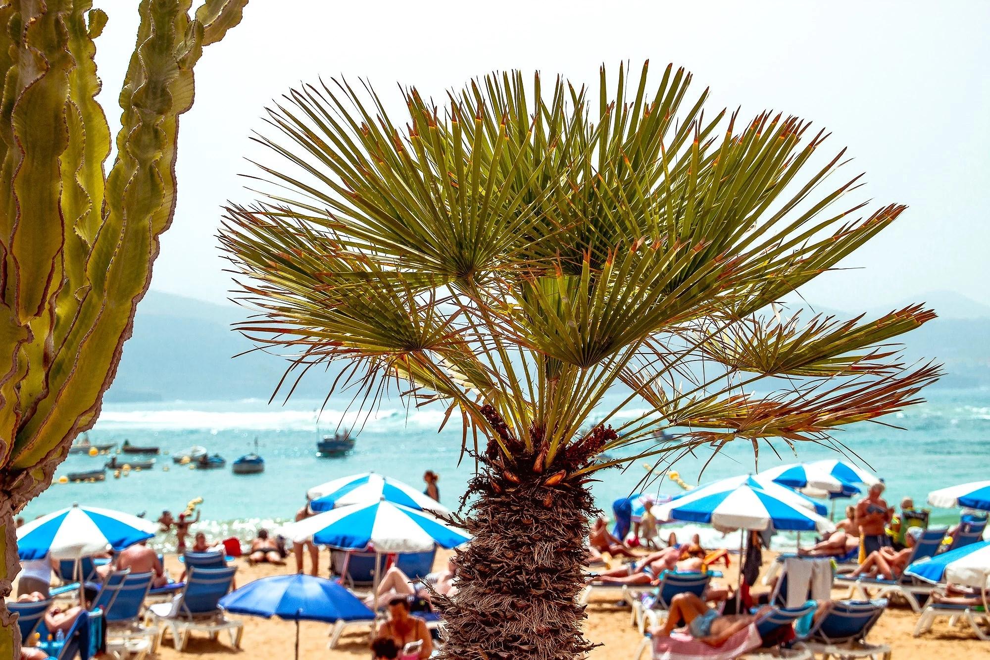 Gran Canaria Part 1