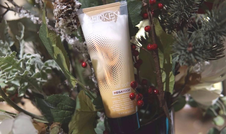 Produkttips för torra vinterhår
