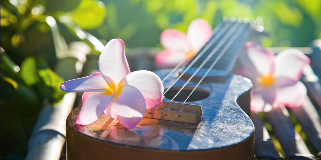 Image result for hawaiian ukulele
