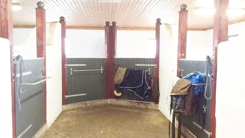 Det nya stallet
