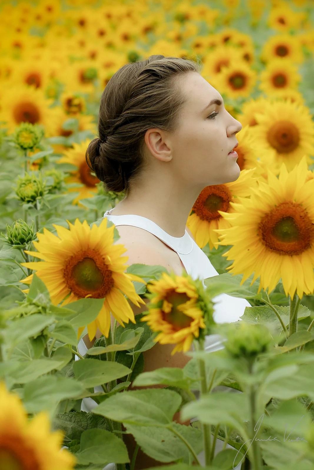 041 Flower field