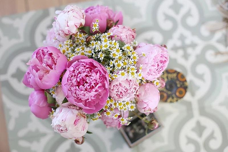 krist.in peonies flowers