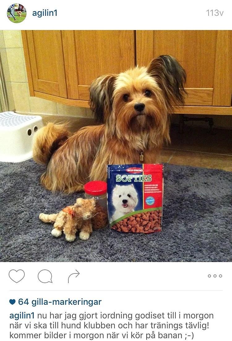 Instagram-minnen❤️