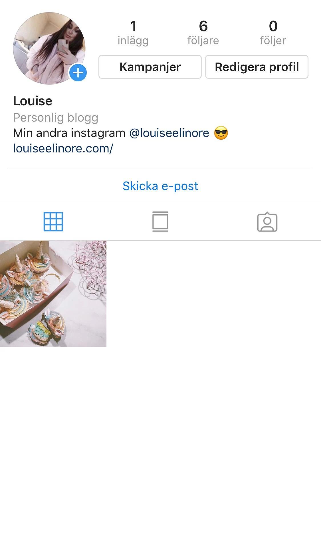 Blogg-instagram