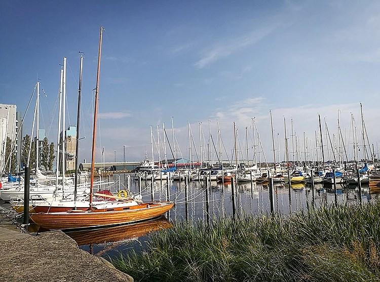 Swedish summer 2017