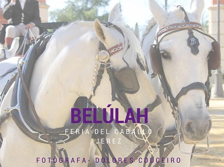 Feria del Caballo con Belúlah