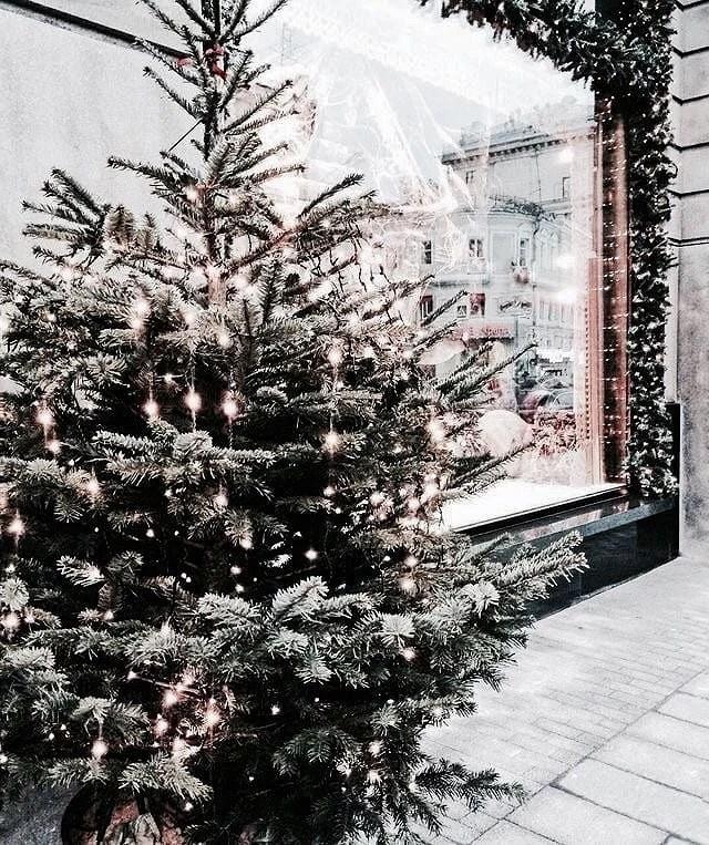 CHRISTMAS FEELINGS +