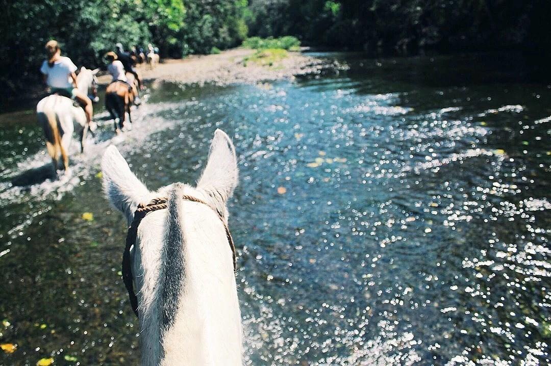 HORSEBACK RIDING in the jungle - en av de coolaste sakerna jag gjort.