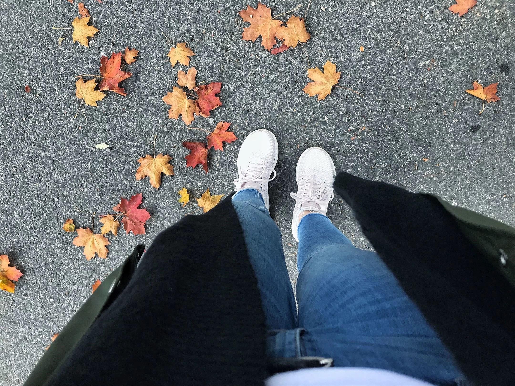 Lazy autumn days