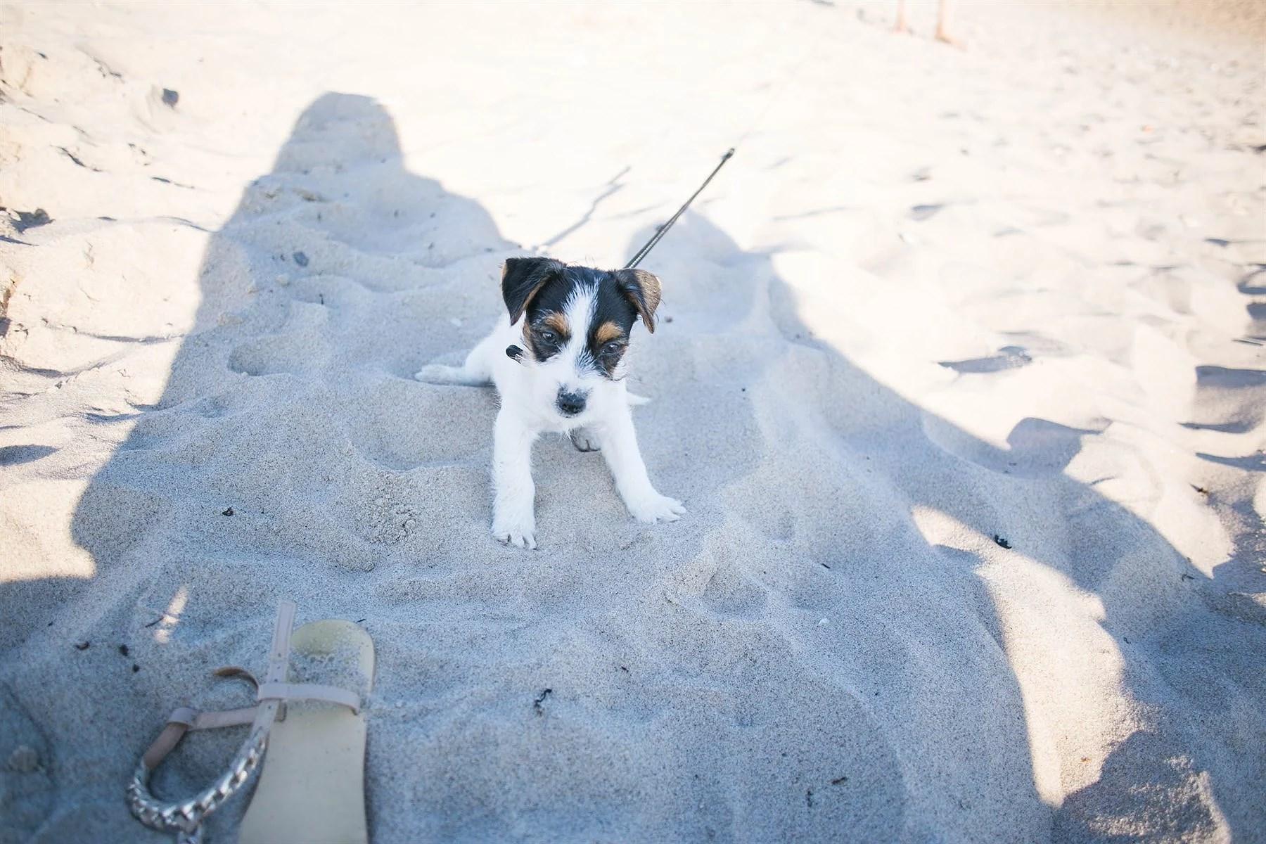 Beach day (1 of 1)-3