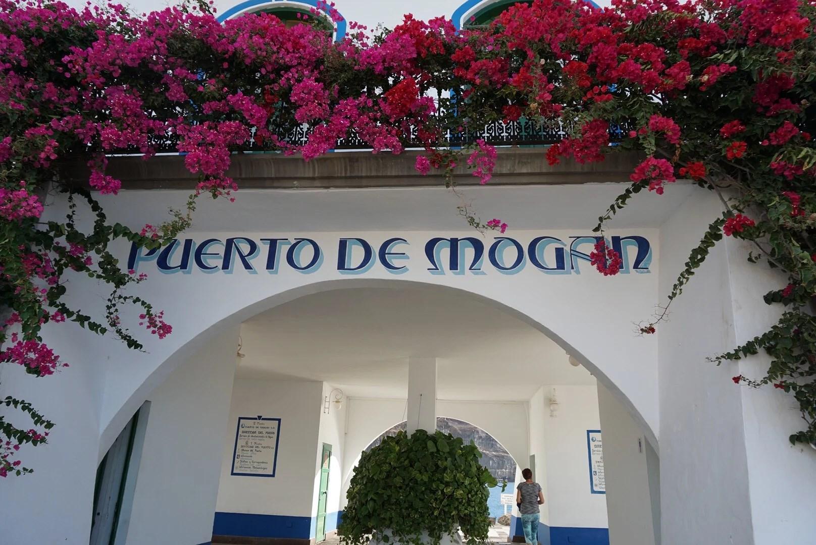 Båttur till Puerto de Mogán
