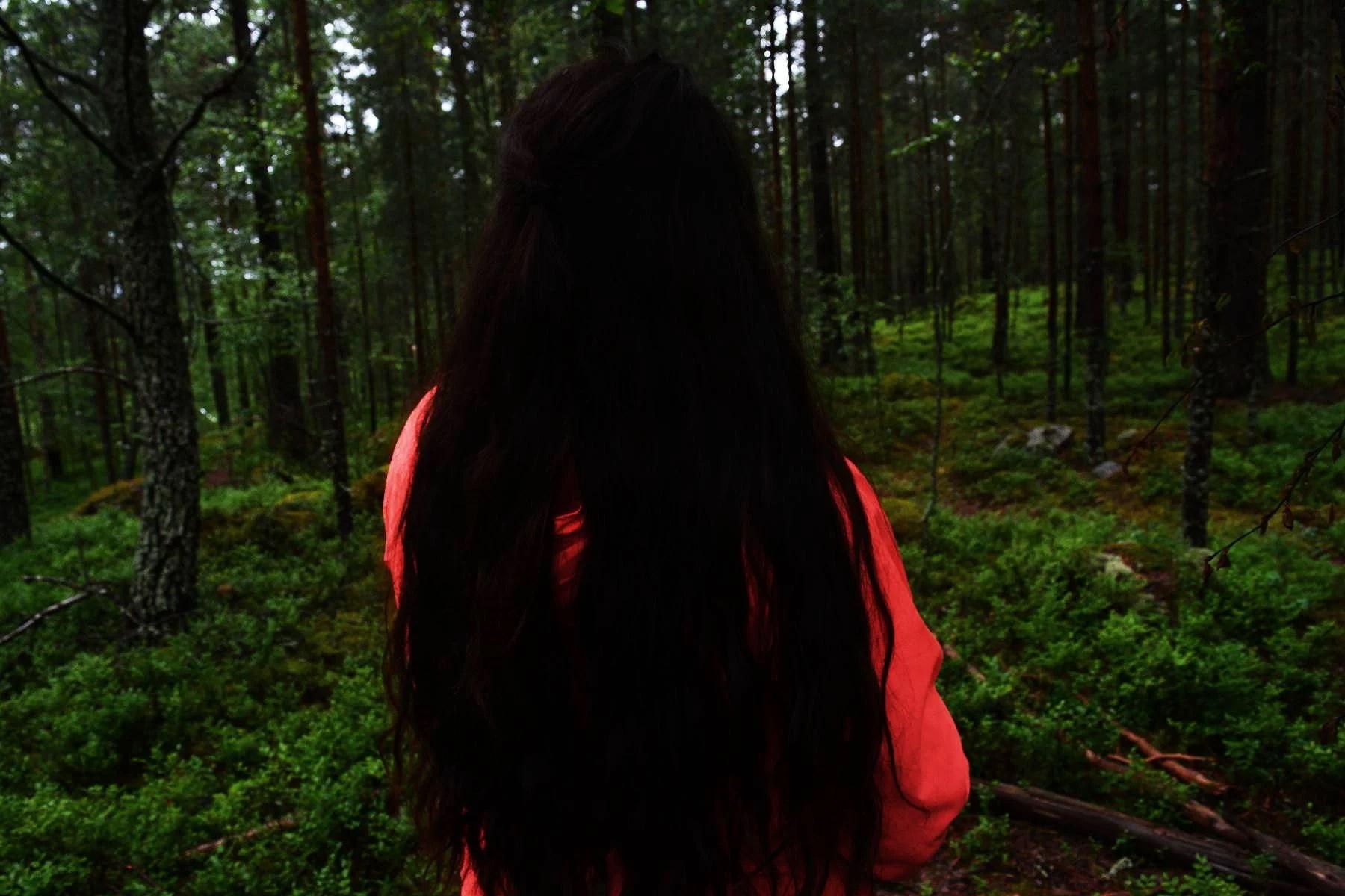 när skogen levde