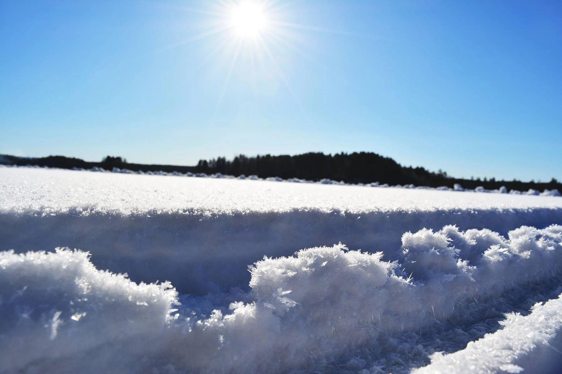 en dag på isen