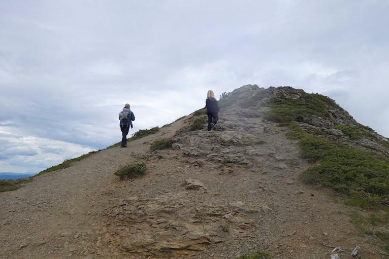 Vandring bestiga städjan familj med barn Nipefjället naturreservat berg skog hemester svemester nästan på toppen.