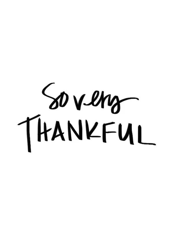 1 år på bloggen. Tusind tak for alt!