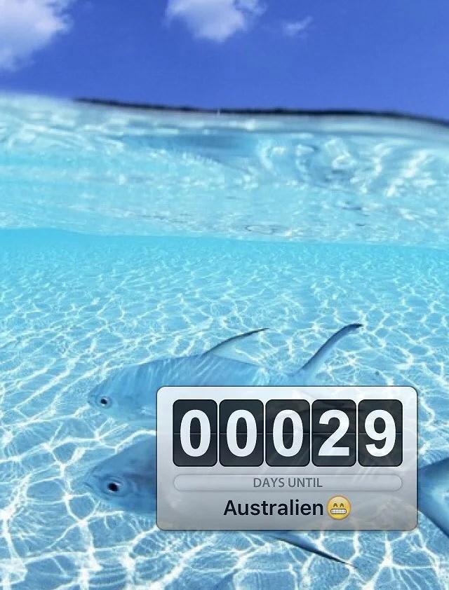 29 dagar kvar tills vi åker!!
