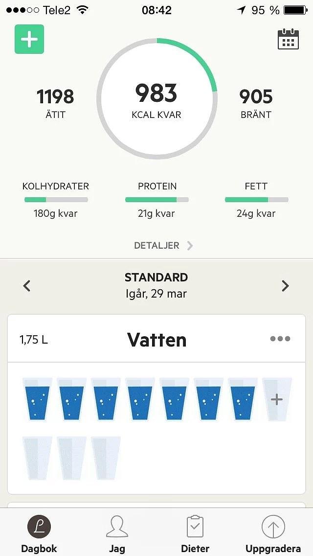 Antal kcal per dag
