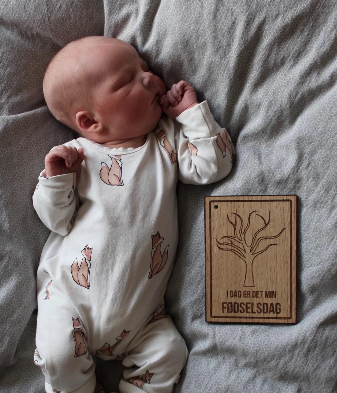 Lillebrors første dage