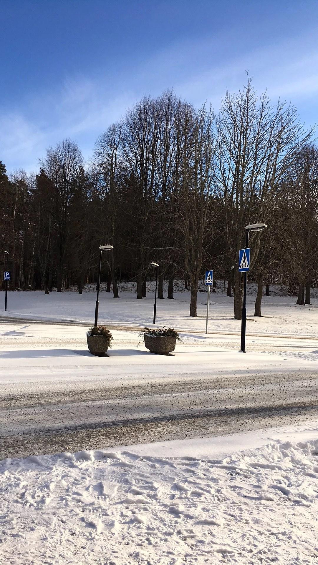 Det har blivit vinter