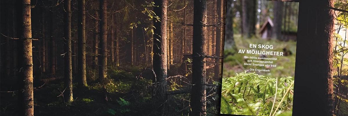 En skog av möjligheter