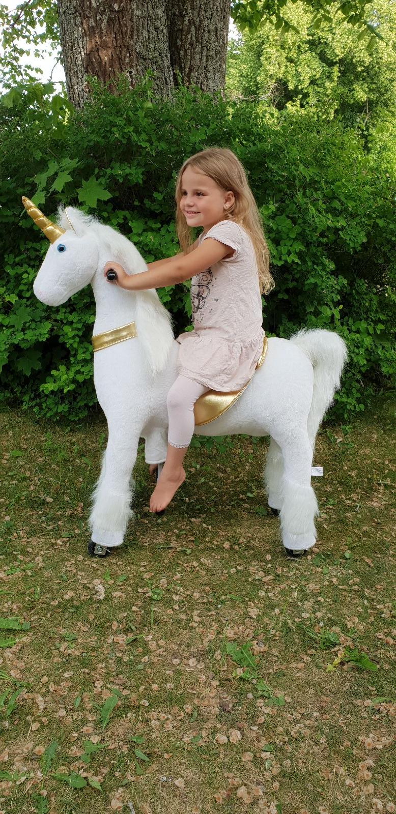 Vem vill inte ha en alldeles egen, ridbar enhörning?