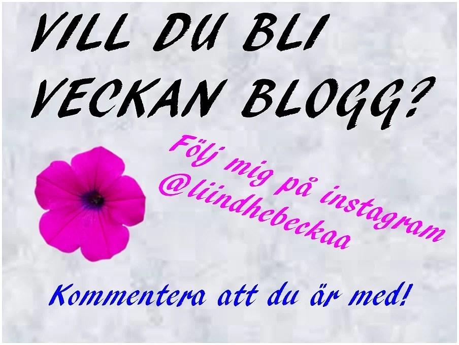Veckans blogg....