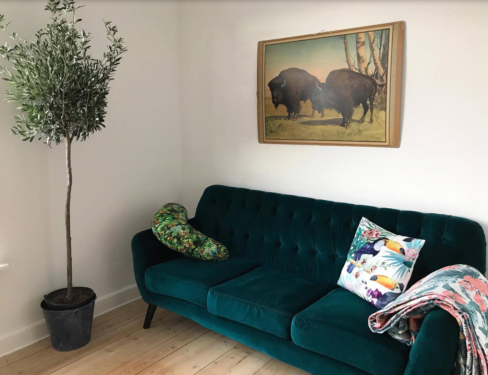 Our Sofa Area