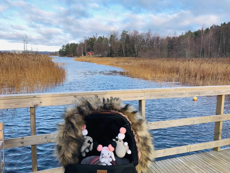 4,6 km längst sjön i solen