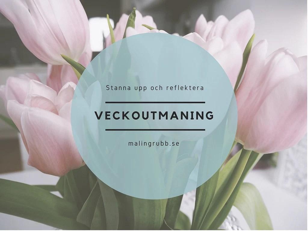 Bloggutmaning! Stanna upp och reflektera