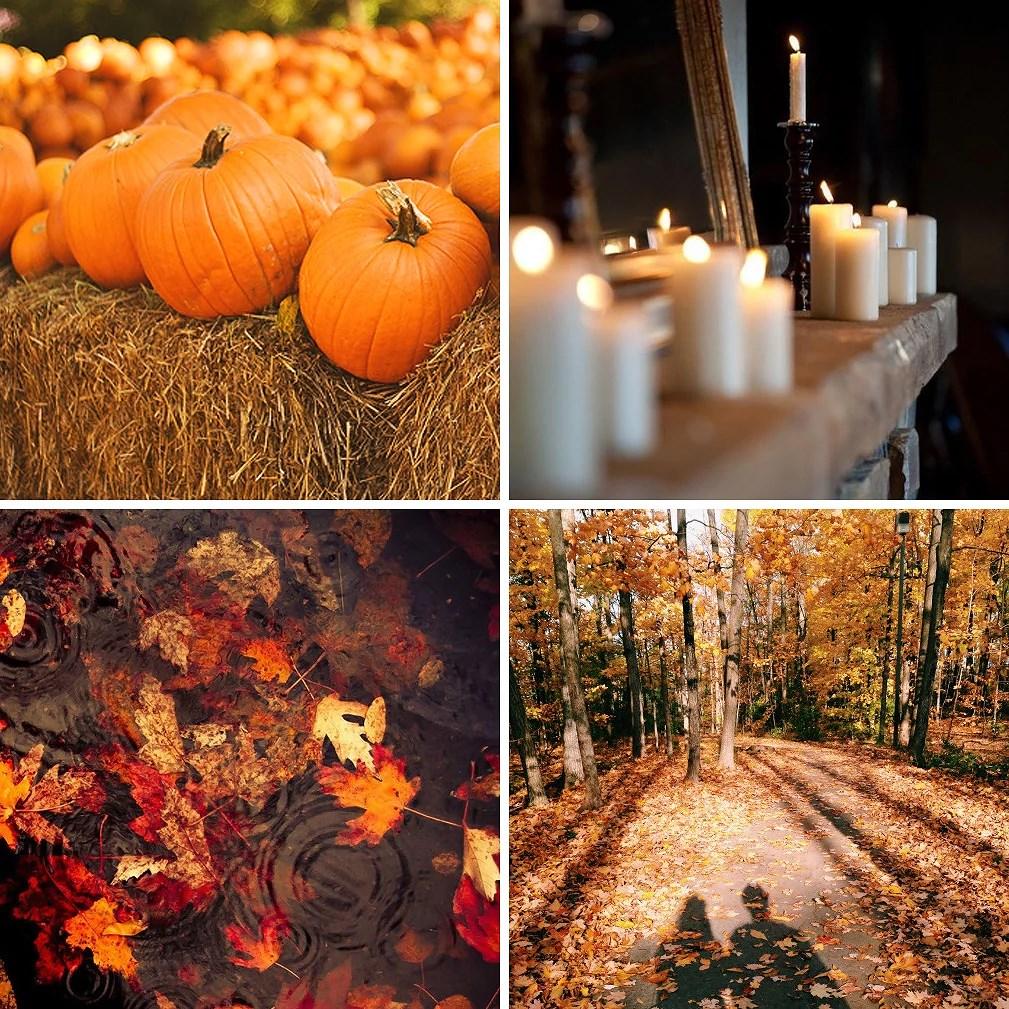 autumn-love-ballbreaker-hey-4
