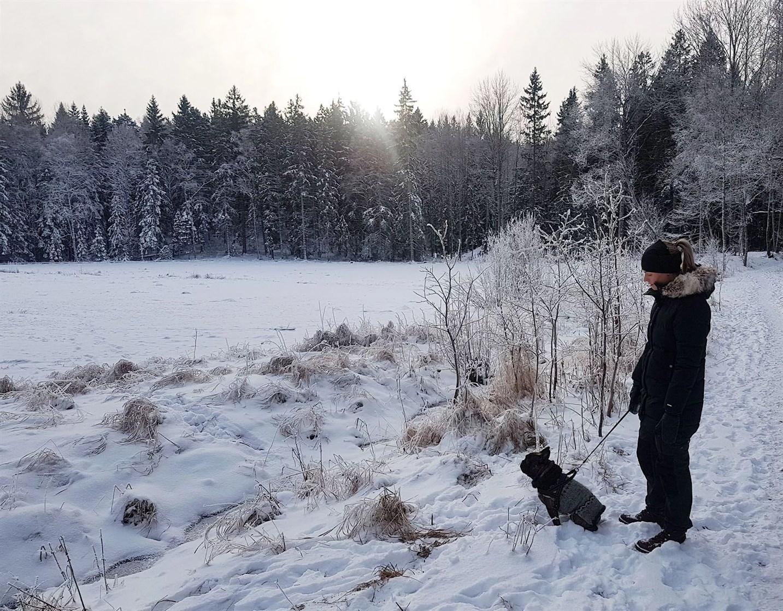 Johanna-skogen-diesel-hund-stockholm-2018-vinter