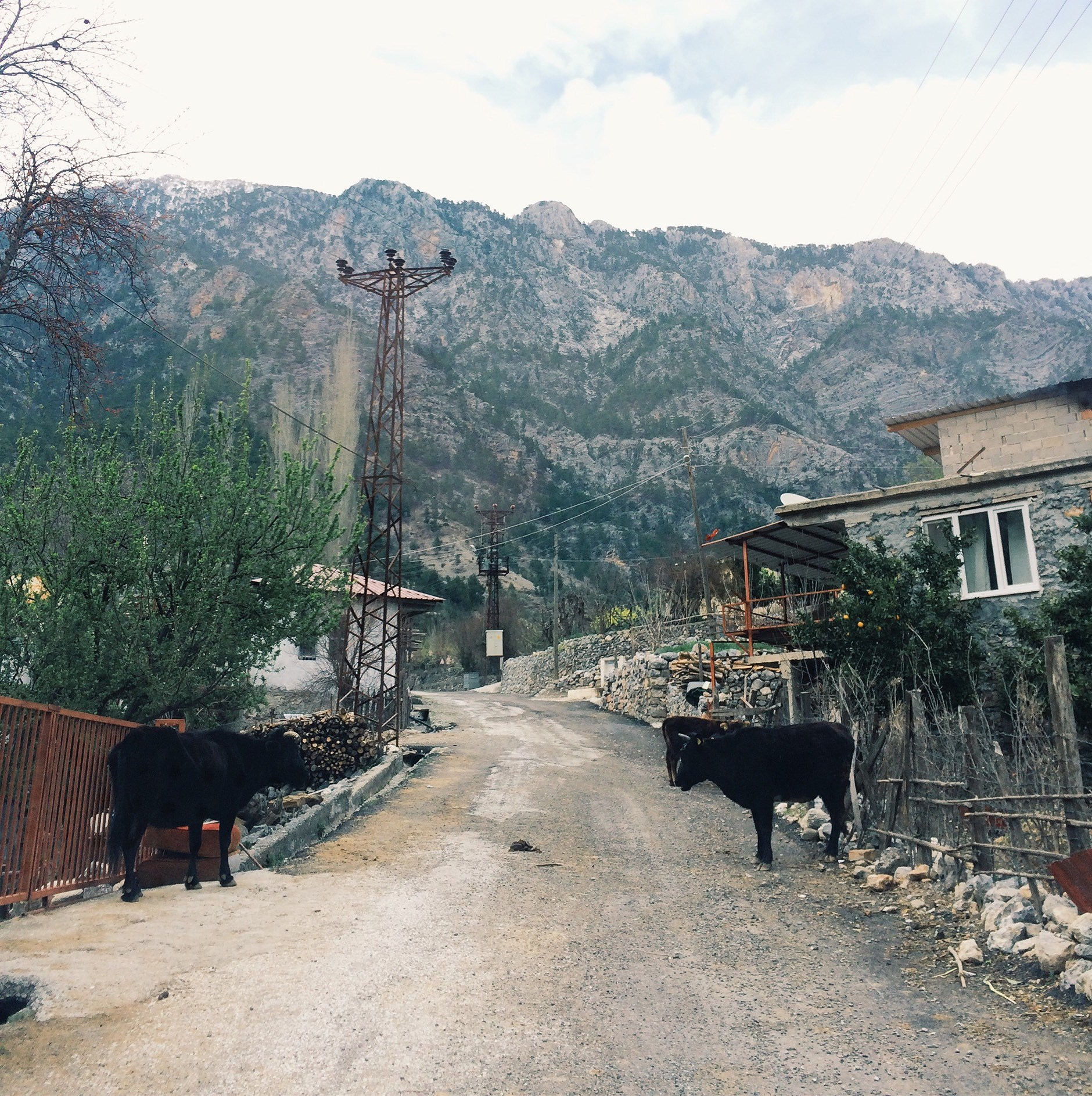 Alacami Köyü - igjen