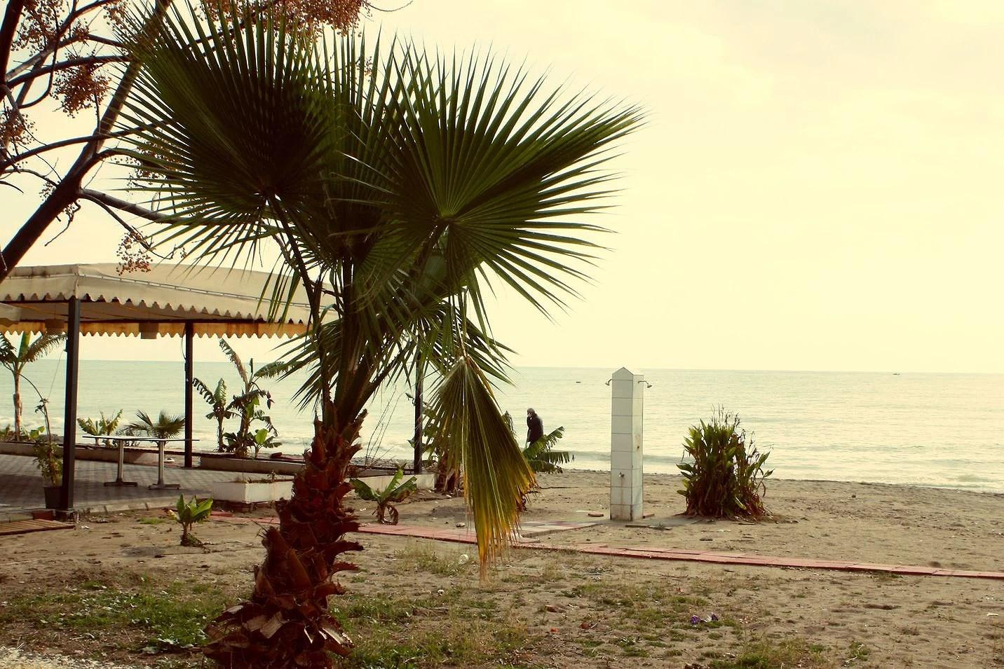 A stroll along the beachside
