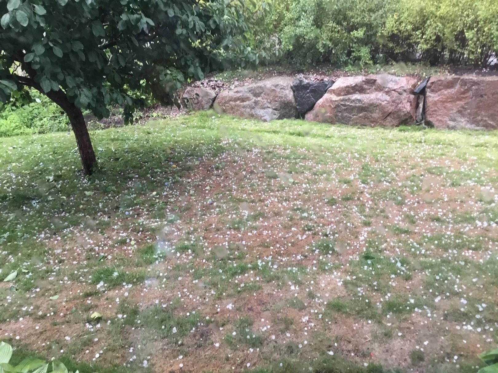 Vilket Väder