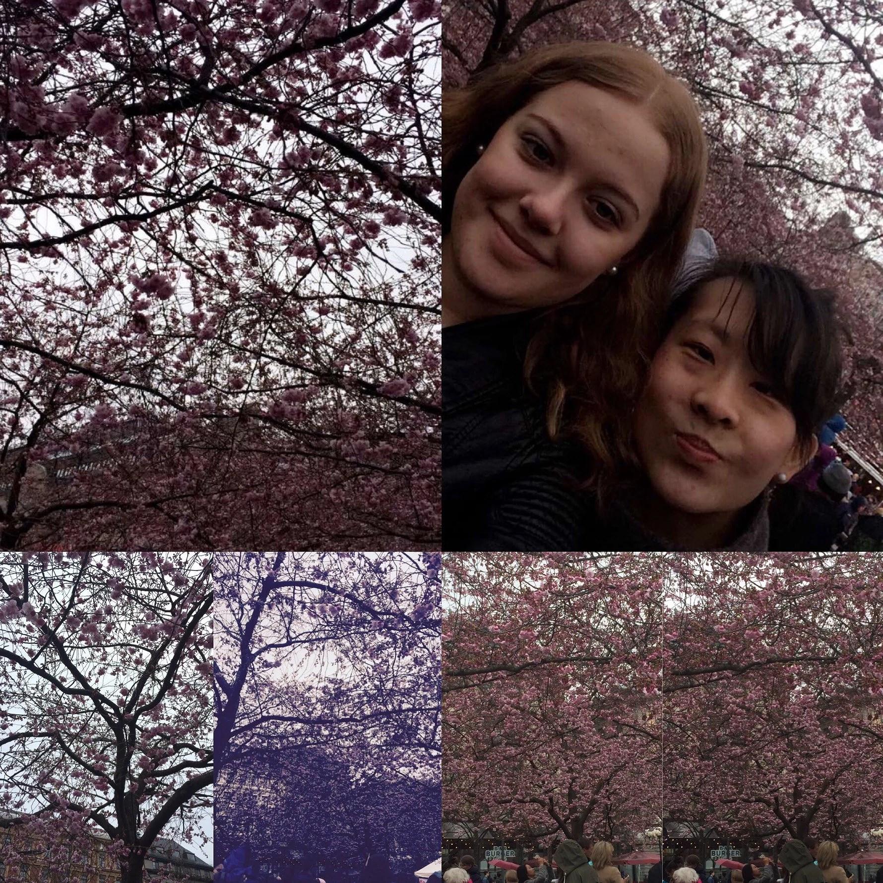 Våren är här ☺️❤️💚💙💜