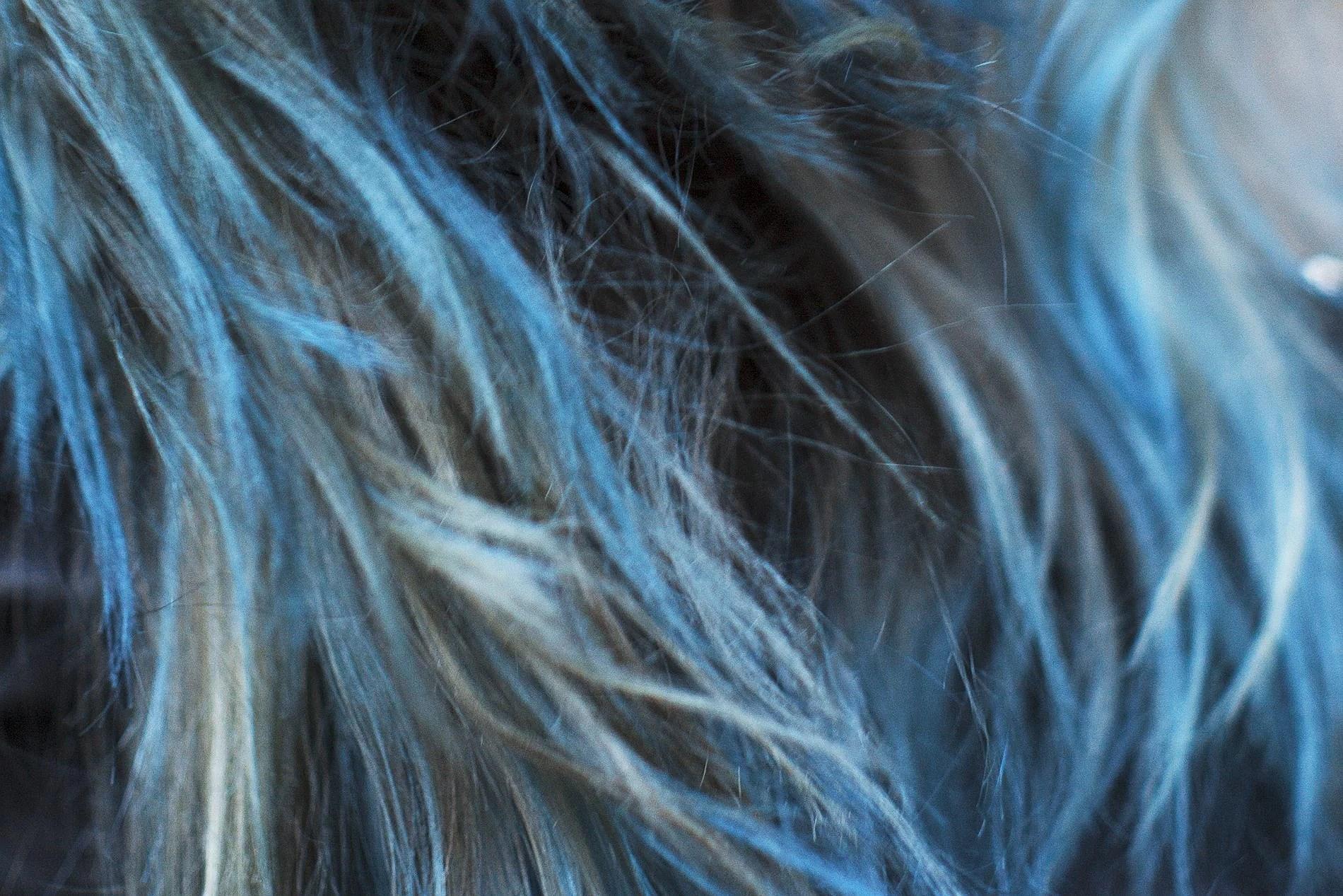 hairgoals3