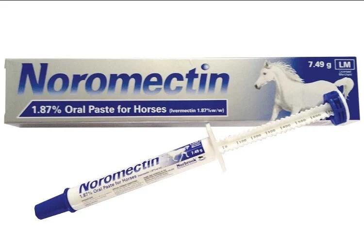 olika avmaskningsmedel häst
