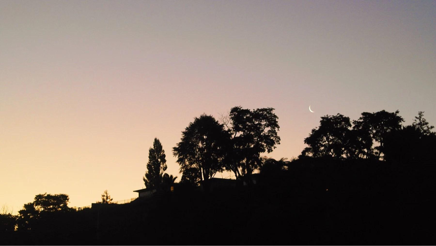 UNDERBARA NYA ZEELAND