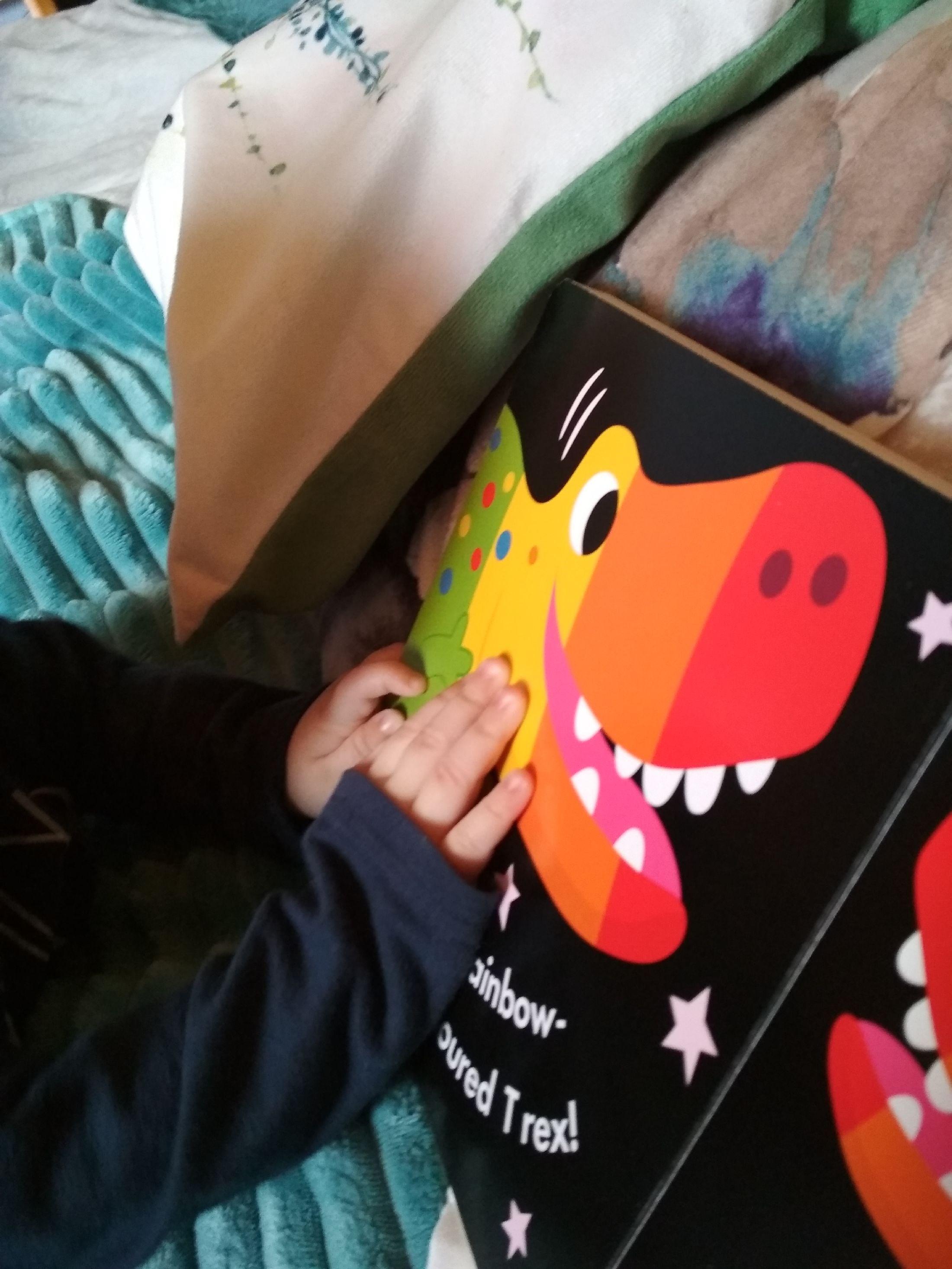 Kolorowe dinozaury najlepsze do poduszki