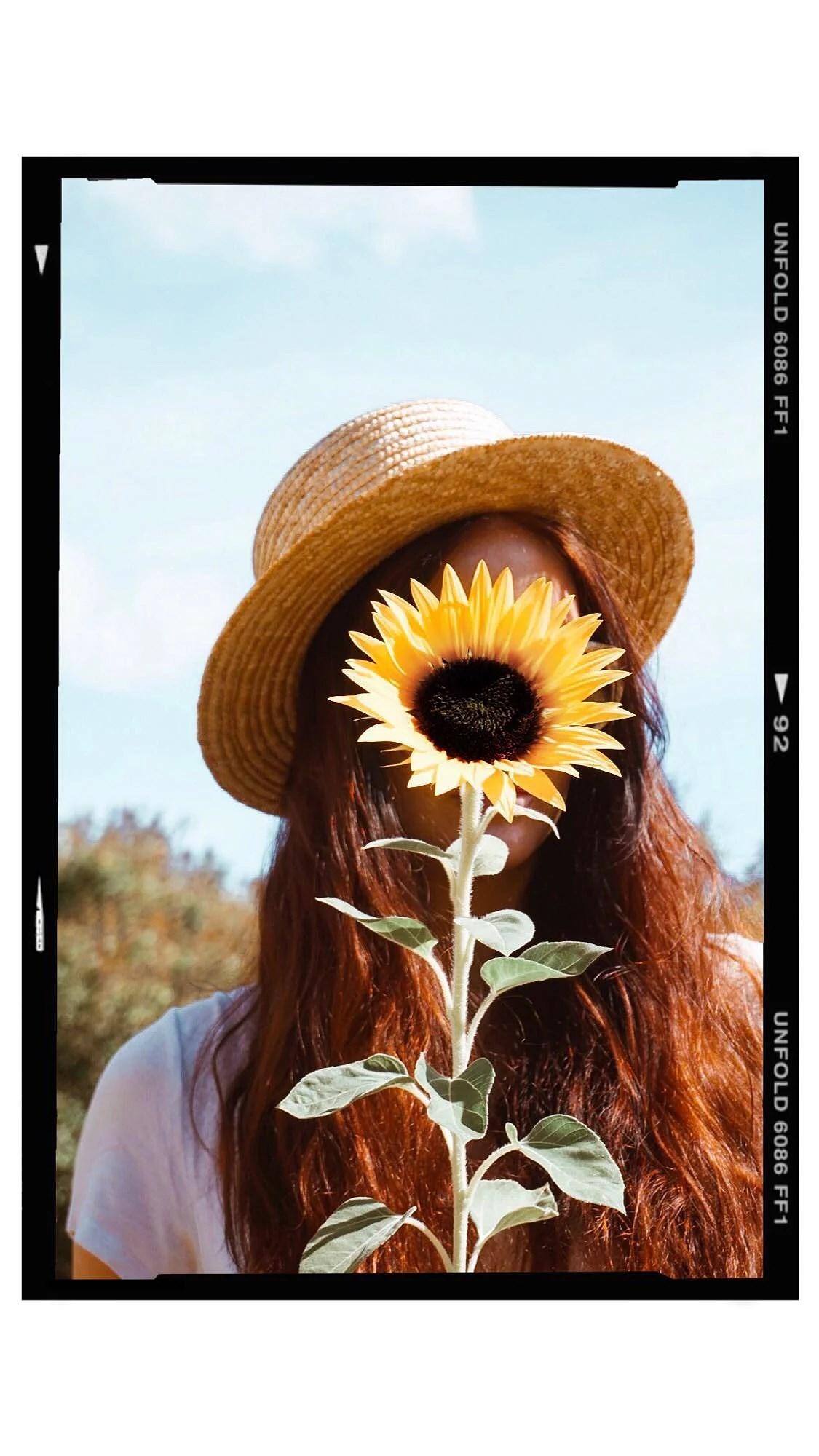 Snapshots in the sun