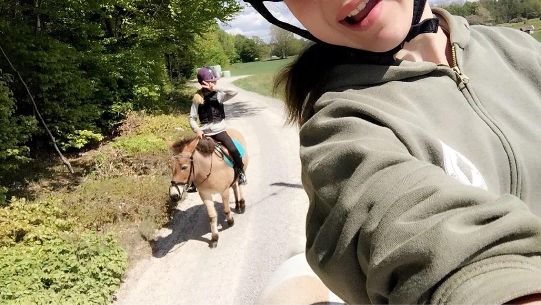 Hästarna idag