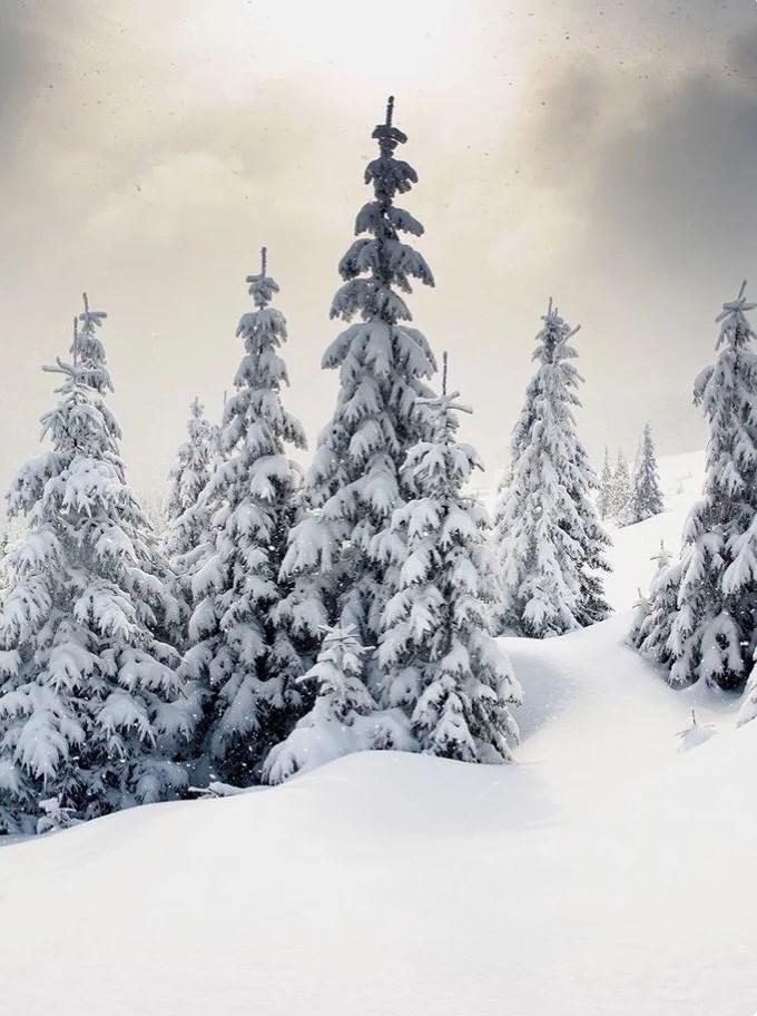 Upp till snön