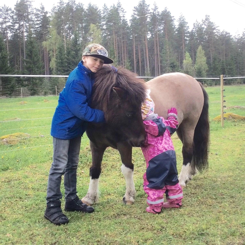 Världens goaste ponny