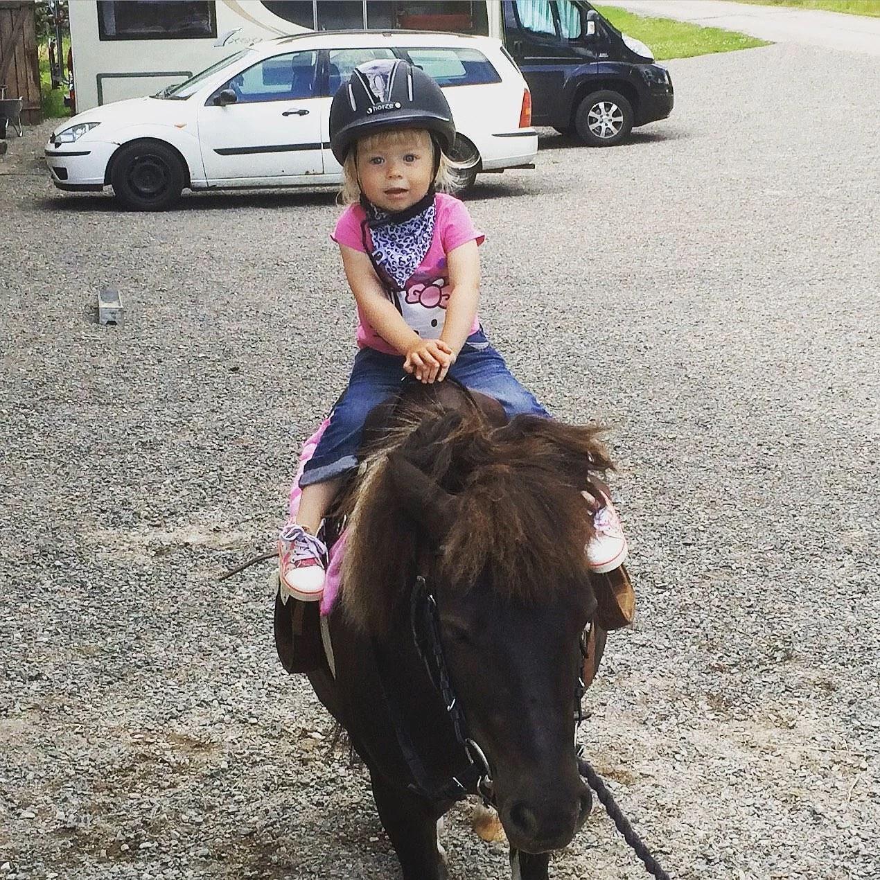 Onsdag med hästar, vänner och loppis