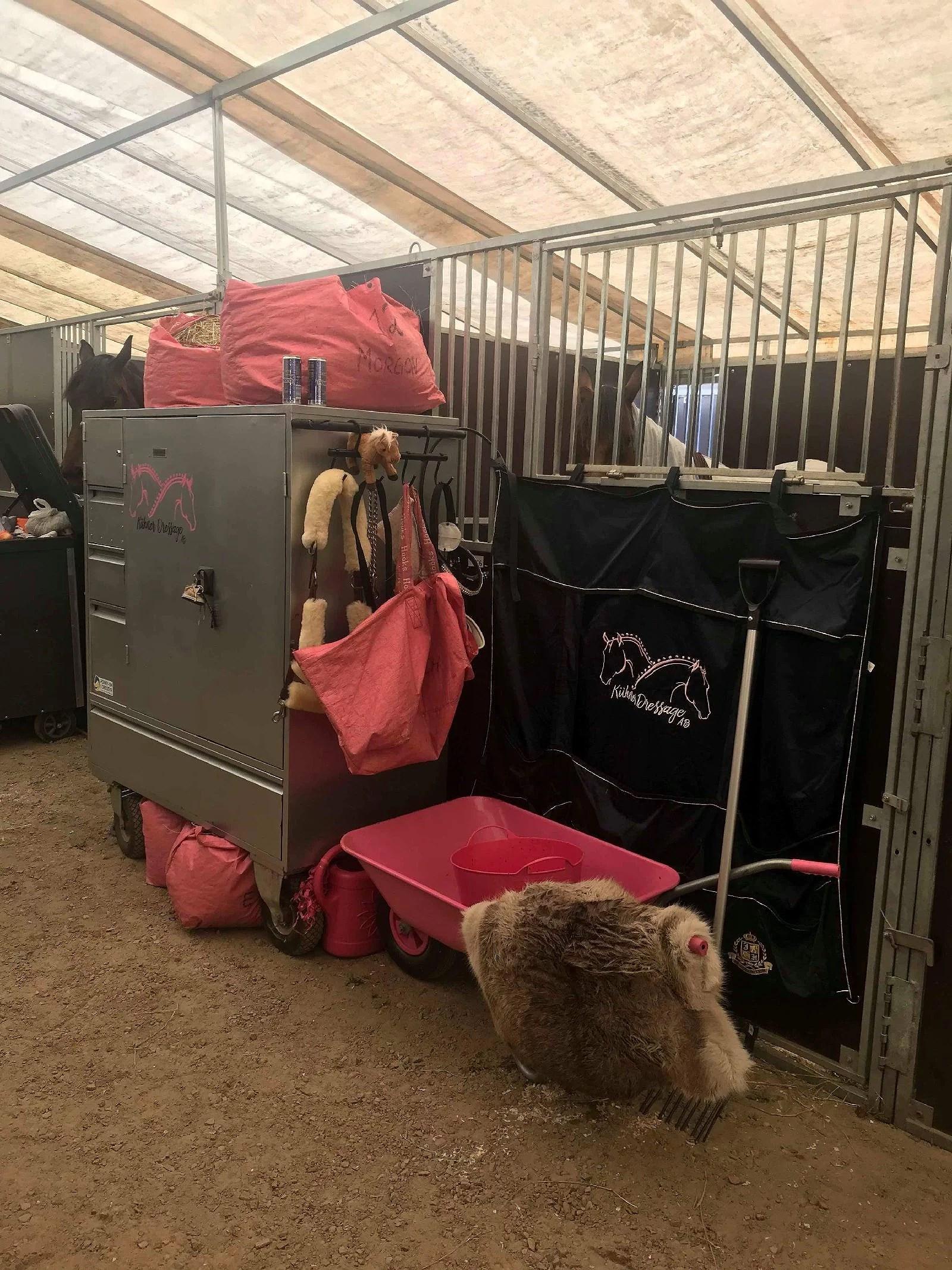 Sa någon rosa?