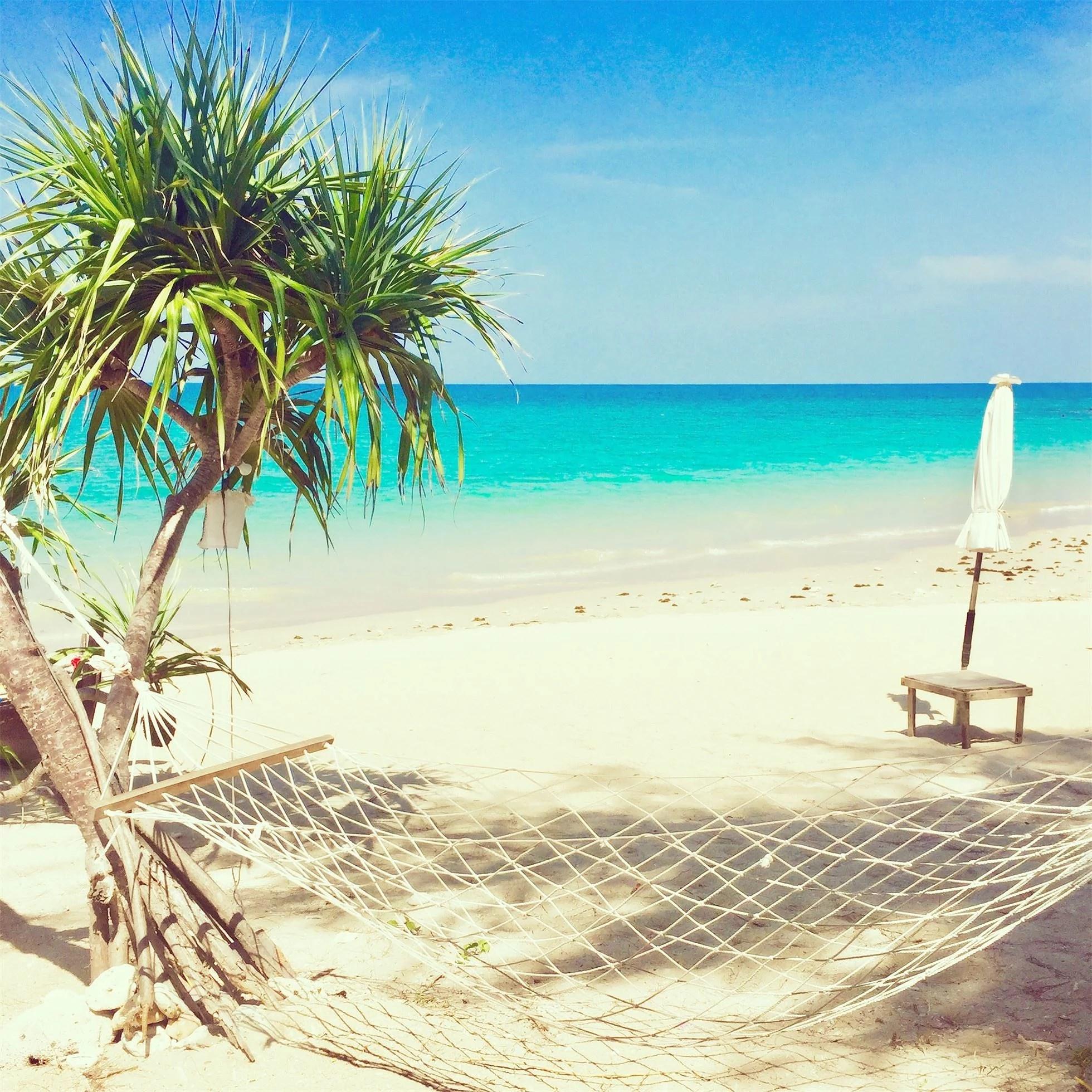 Livet på en strand