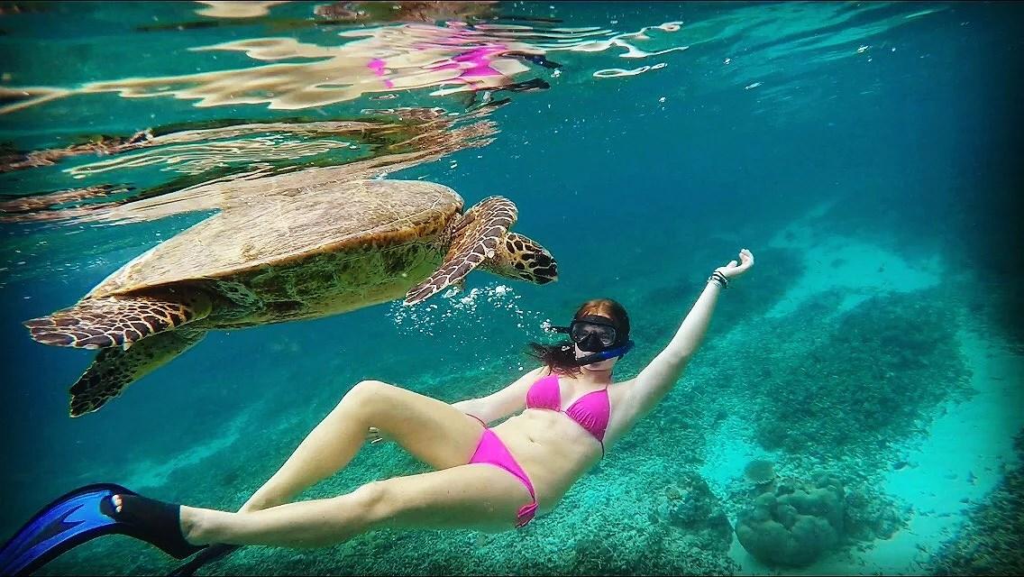 Ärr från manet, lever life med sköldpaddor & Bali