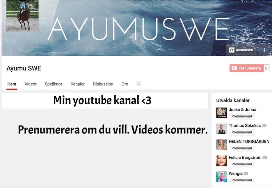 Min Youtube kanal