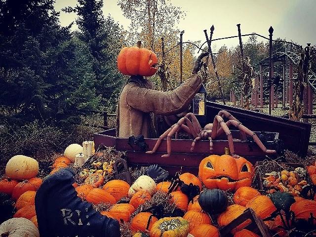 Hverdagsmomenter #8 Halloweenudgave Djurssommerland