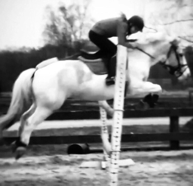 Friyay! || Underbar ponny